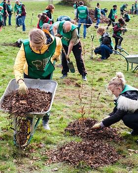 Beckenham-Tree-Planting-02-Dec-18-85_27f