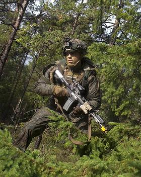 marines-training-in-forest_edited.jpg