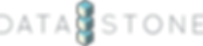 DataStone logo