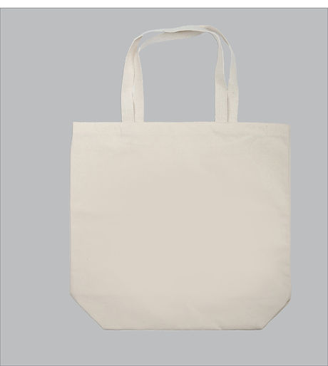 Gibbs Smith Blank Bag for layouts (1).jp