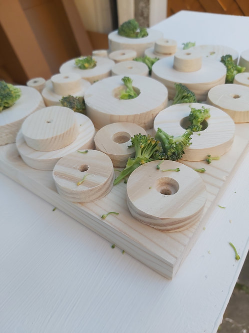 Wooden foraging toy