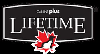 brand_logo__0018_Lifetime_Logo.png