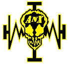 AnX Logo on transp.png