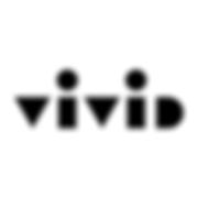Vivid Systems