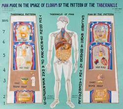 Tabernacle of Man Chart