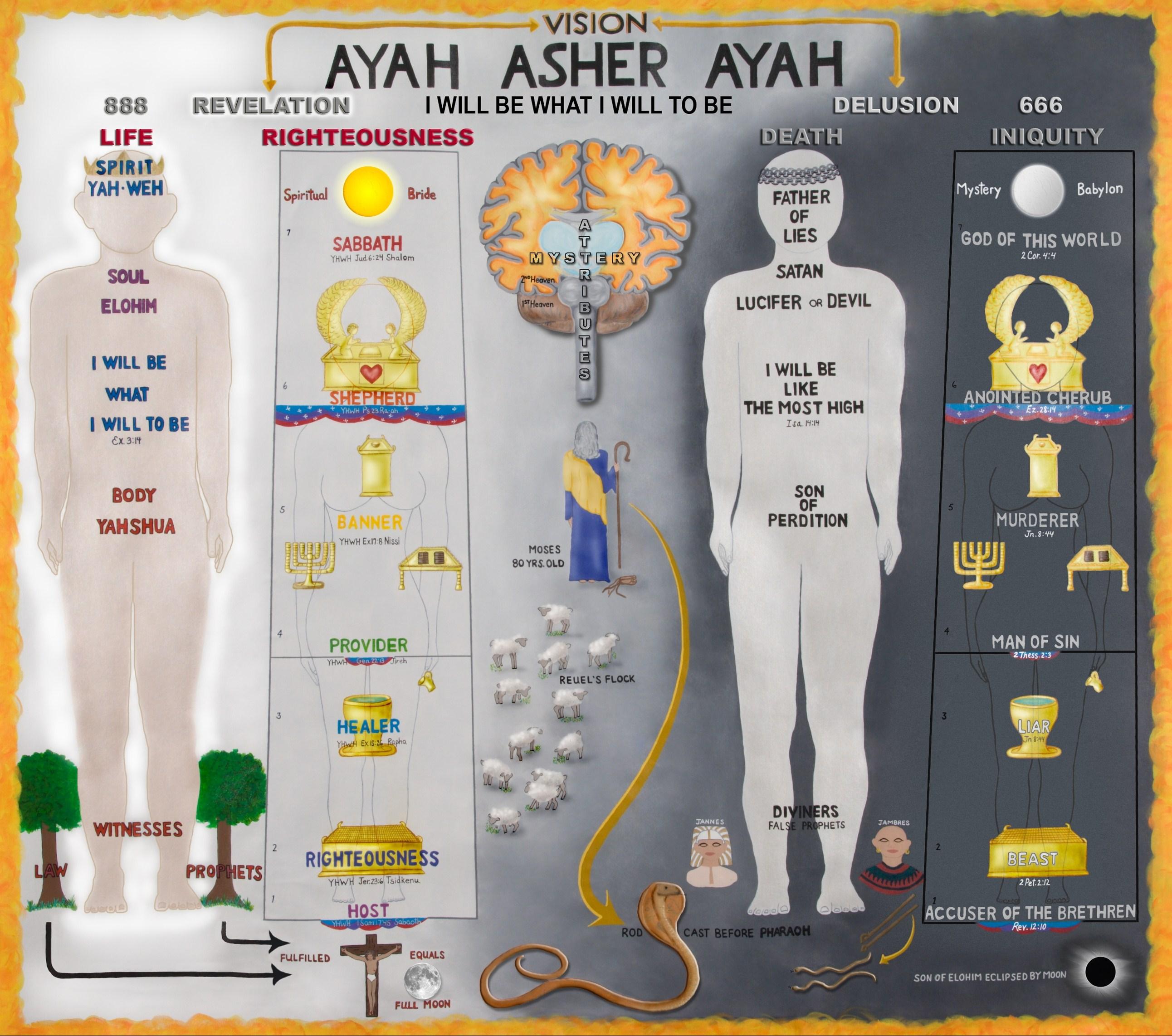 Ayah Asher Ayah Chart