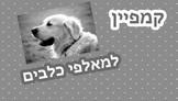 קמפיין למאלפי כלבים