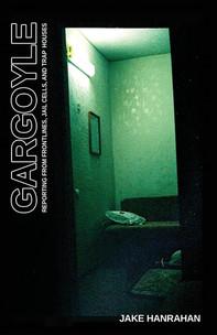 Book Review: Gargoyle