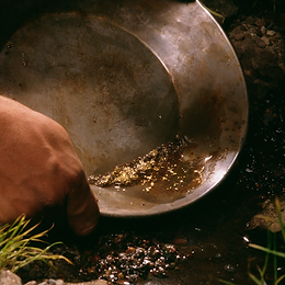 panning for gold.png