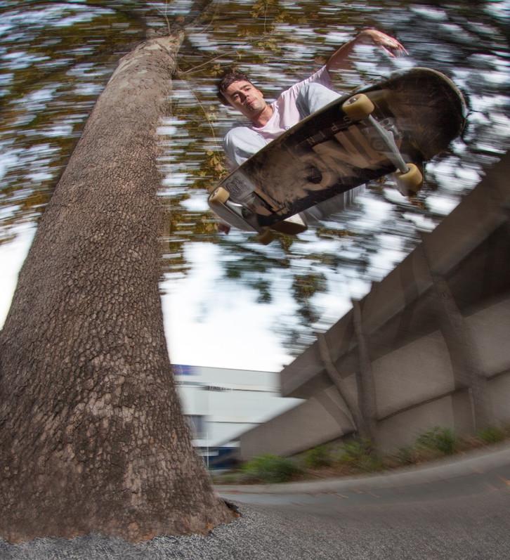 Lloyd Ingram - Tree Wallie