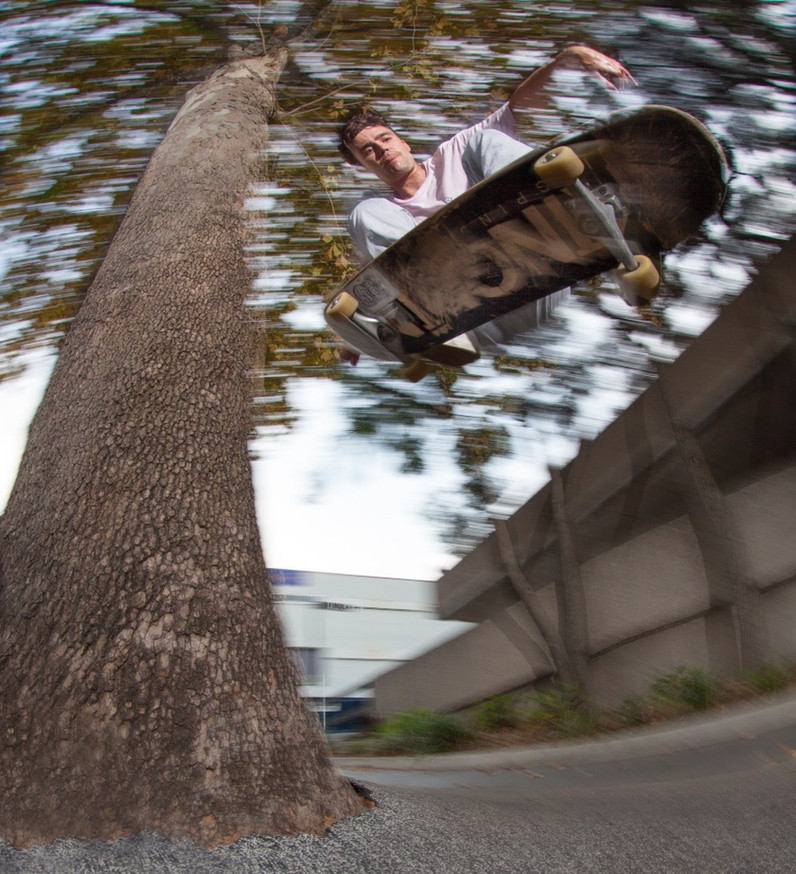 Lloyd Ingram - Tree Wallie