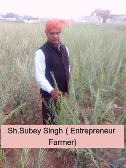 Sh. Subey Singh