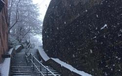 Steps_snow_long.jpg