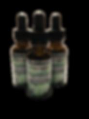 chlorophyll3-T.png