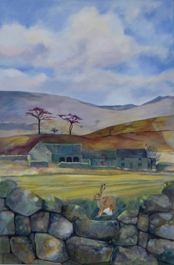 Northumberland Farmhouse