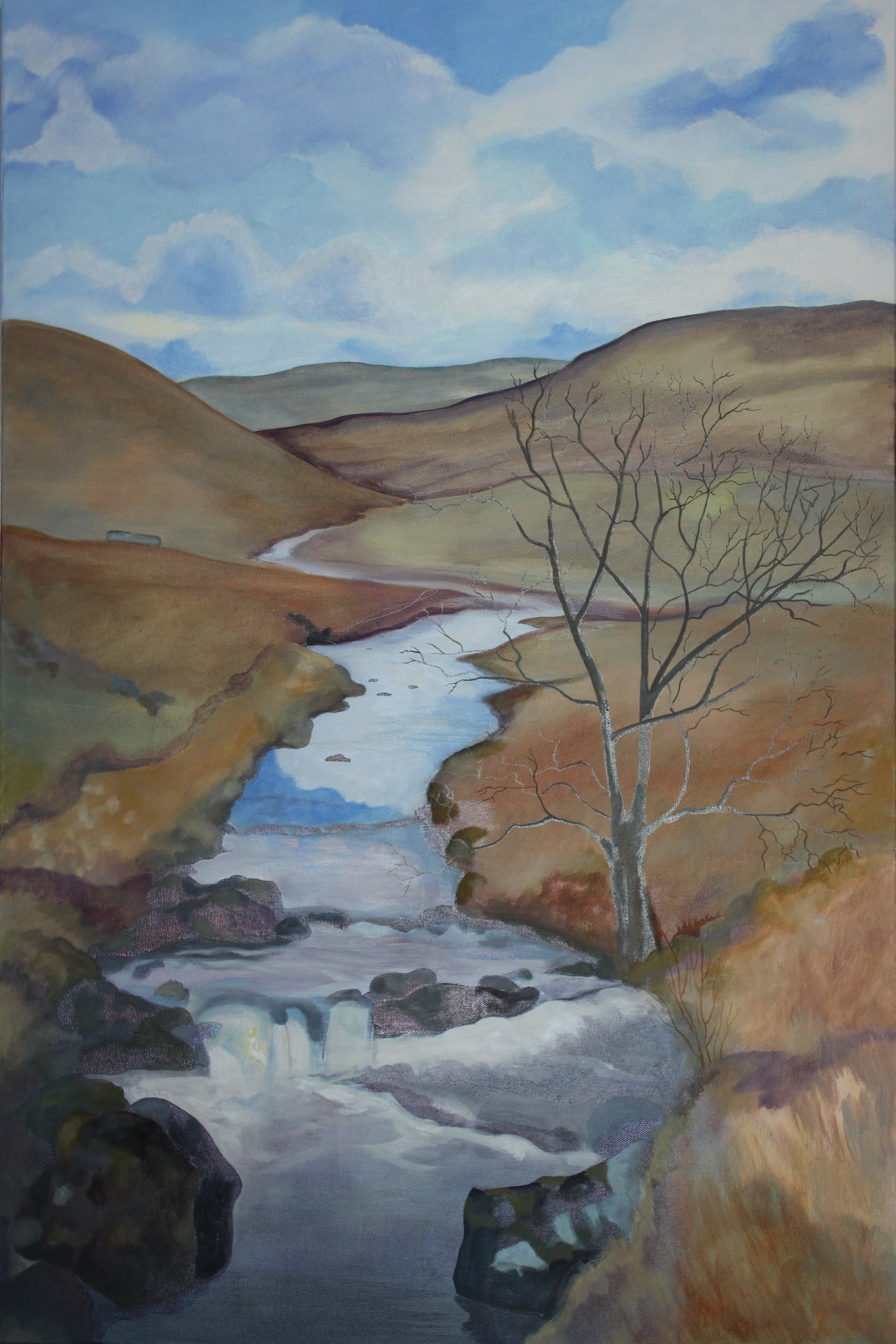 Upper Coquet, between Windyhaugh and Carshope