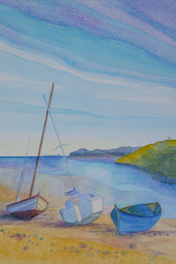 Alnmouth Summer