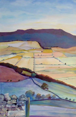 Valley from Cartington House