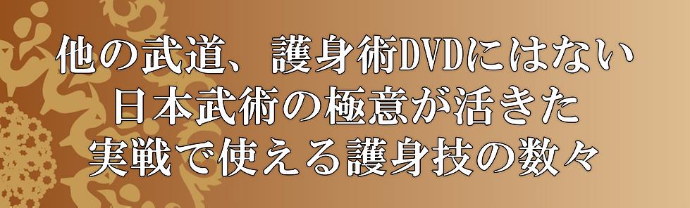 他の武道、護身術DVDにはない 日本武術の極意が活きた 実戦で使える護身技の数々