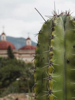 Espinas, Mexico copy.jpg