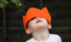 About Us | William and the Wolf | Wolf Cub Crowns