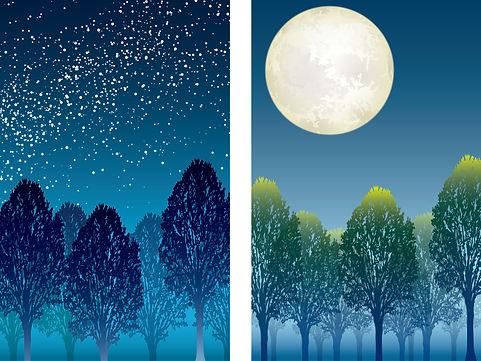 Forest_in_Four_Seasons_6.jpg