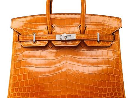 I am an Hermès Birkin Bag