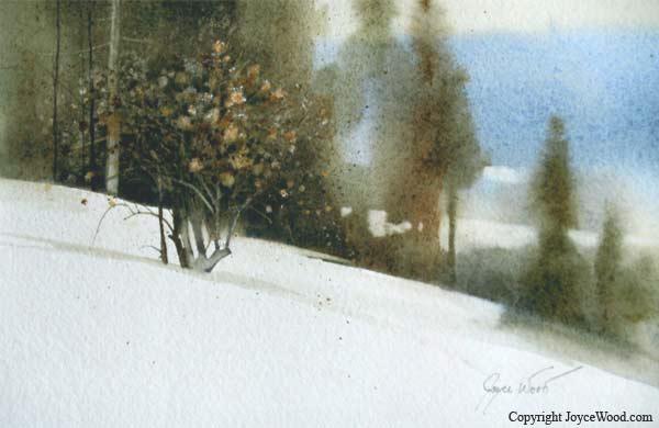 Dried Winter