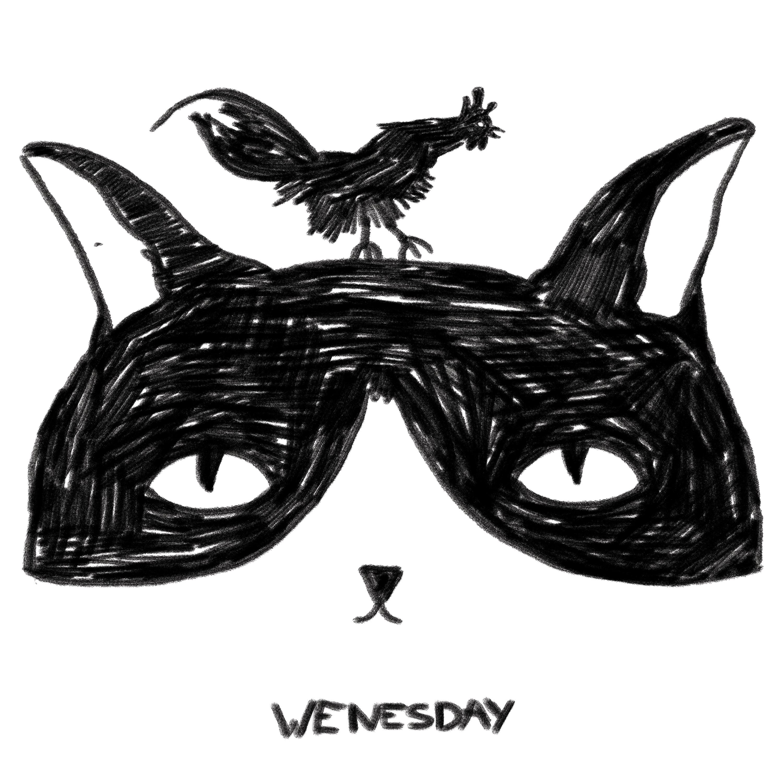Gato_semanal_miercoles