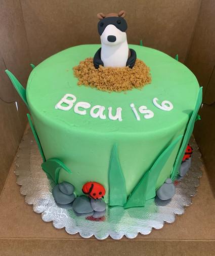 Ferret Cake.jpg