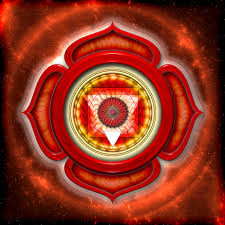 A guide to your root chakra