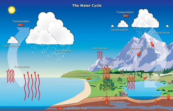 water_cycle.jpg