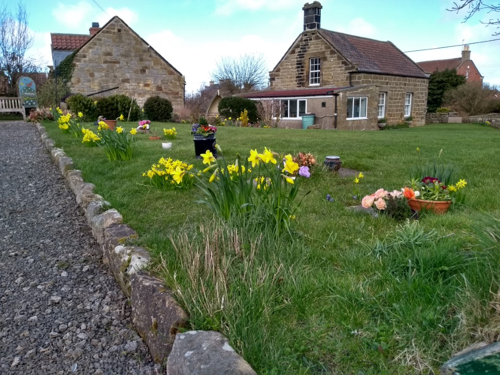 Church yard - first cut of the year