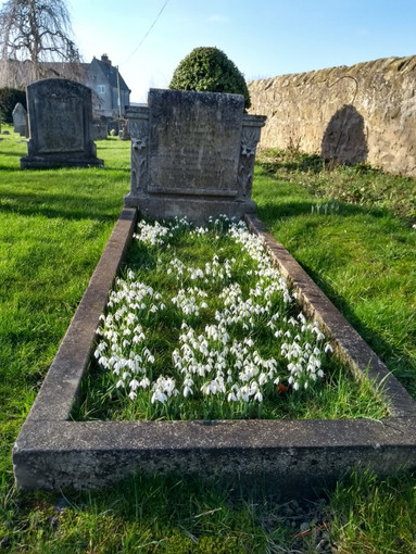Signs of spring in the church yard