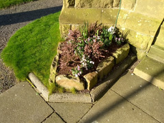Outside the church - signs of spring
