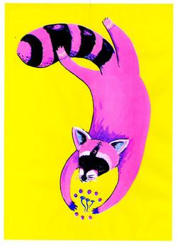 Raccoons n'Shrooms Riso