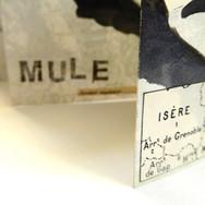 Mule Path