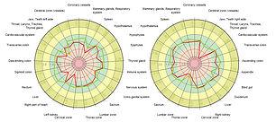 gdv.camera-diagramma.jpg