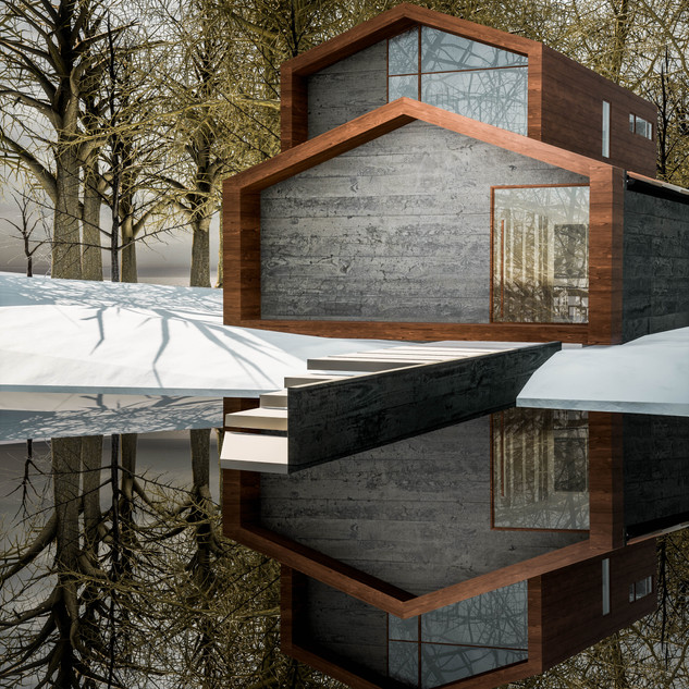David Tomic Architect snow home 01