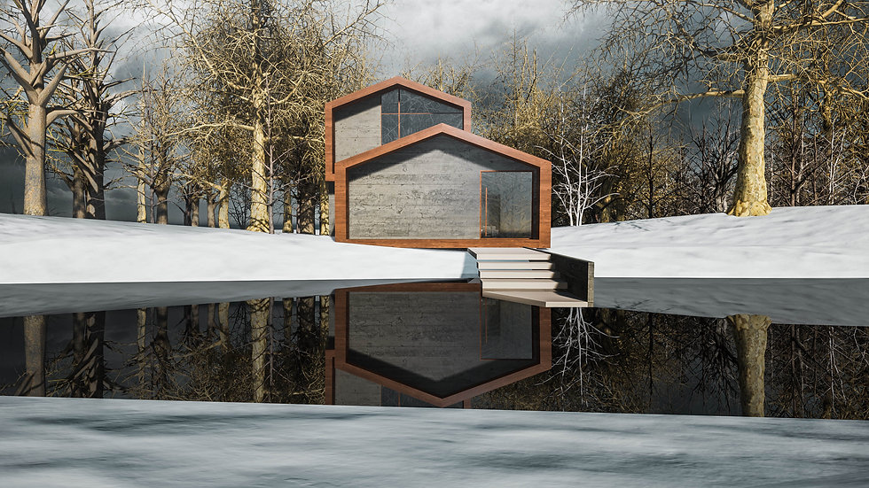David Tomic Architect snow home