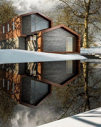 David Tomic Architect Snowhome