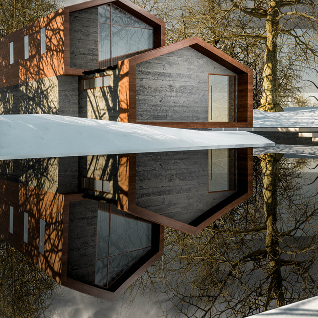 David Tomic Architect snow home 03