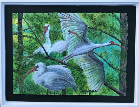 Ibis Inspirit, Sold