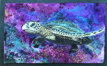 Tidal Turtle, Sold