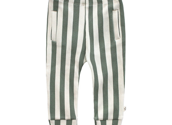 Your Wishes Bold Stripes Fitted Pants