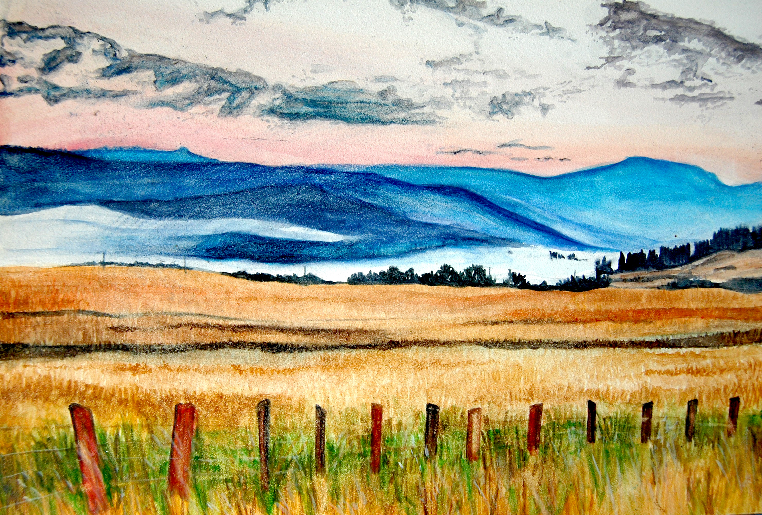 Country Landscape 2012