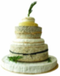 Cake Cutout 5 copy.jpg