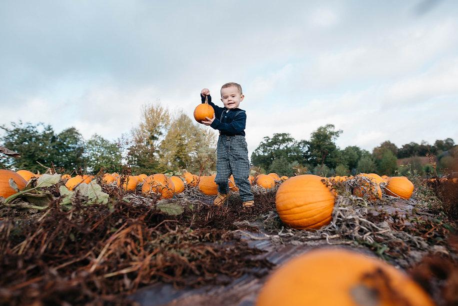 noah pumpkins -12.jpg