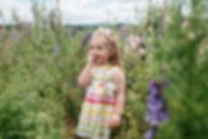 maddison flower fields -222.jpg