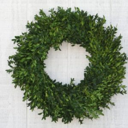 "20"" Fresh Boxwood Wreath"